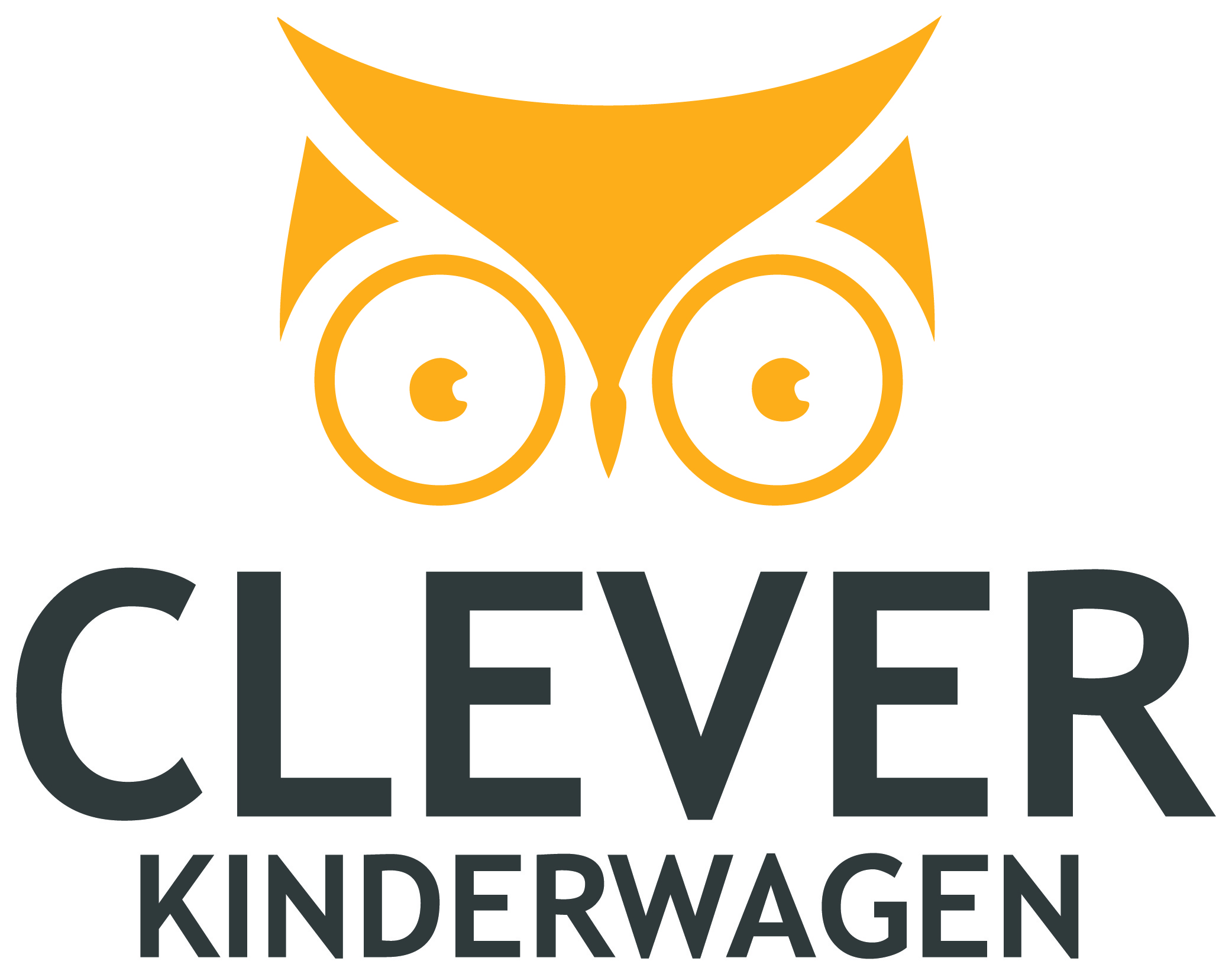 clever Kinderwagen-01 (4)